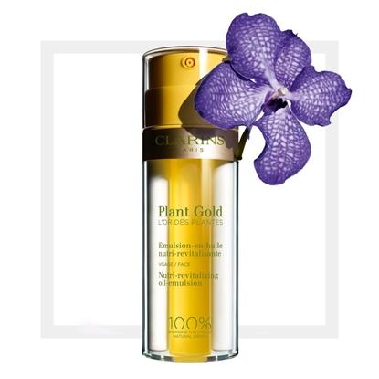 Immagine di CLARINS | Plant Gold Emulsione