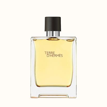 Immagine di HERMES |  Terre d'Hermès Parfum